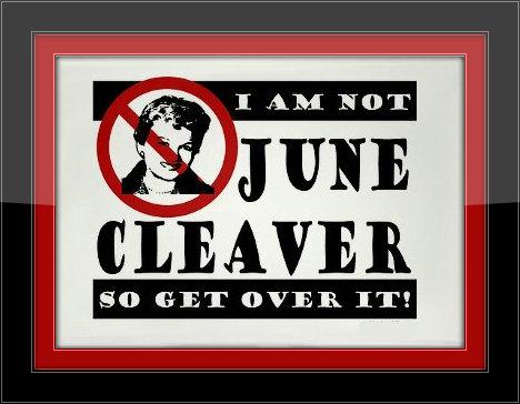 NoJuneCleaver